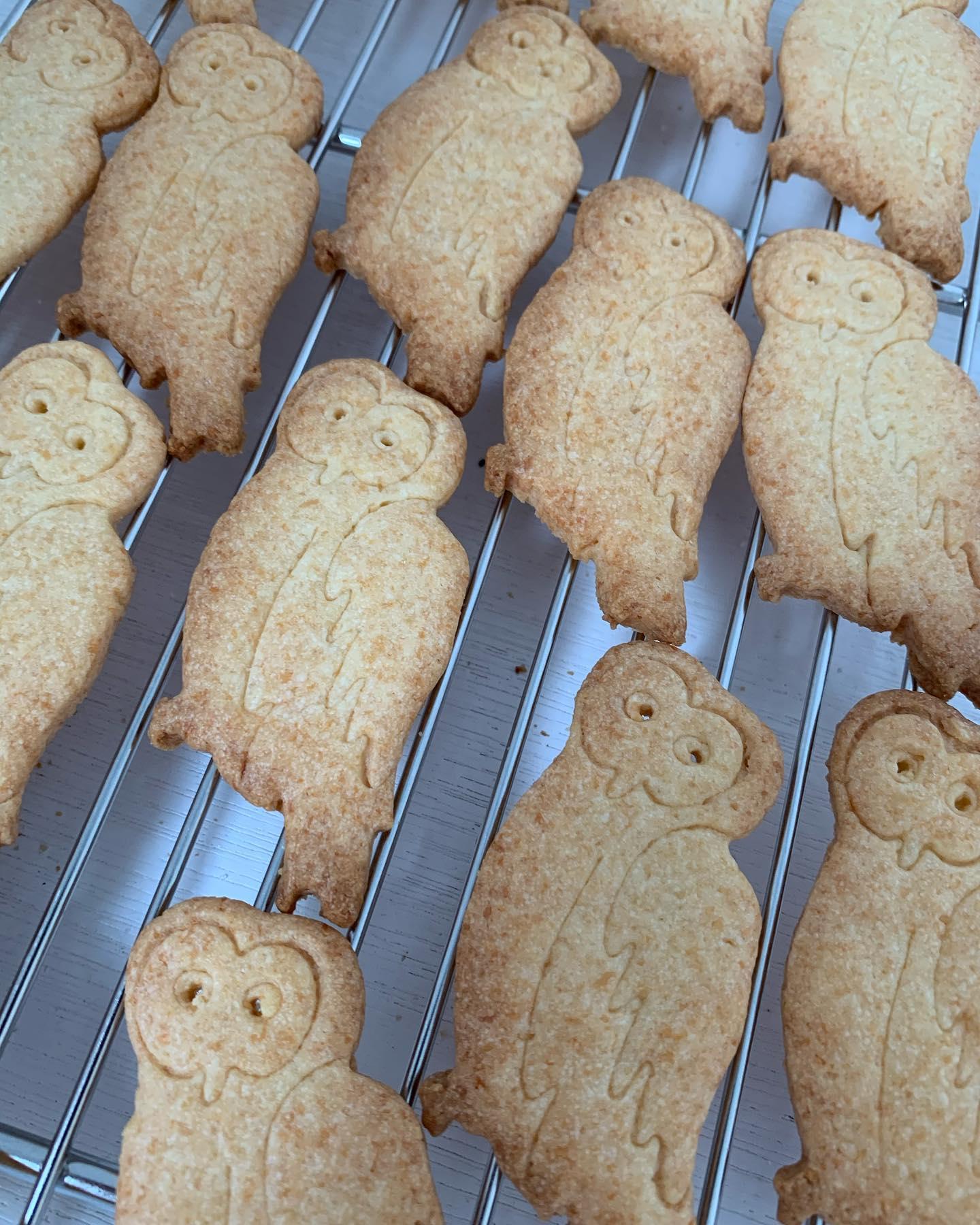 森のふくぞうクッキー焼けたよ🦉こんにちは^ - ^FIKACOFFEEエリカです️のーんびりクッキー焼いてます♪5/1〜5/5のGW中は9:00〜18:00営業です!!GW中もクッキーやコーヒー豆たちはインスタプロフィールからBASEにつながるのでご注文&発送出来ます(^O^)森のふくぞうクッキーは塩チーズクッキーです🧀甘さ控えめで、おすすめはスパークリングか白ワインに合わせるといい感じですー️弱いけどお酒好きなエリカより🤣FIKA COFFEE(フィーカ コーヒー)福岡県福岡市博多区下川端町3-1 博多リバレイン1FTEL0922926601営業時間→平日9:00〜20:00  土日祝9:00〜18:00店休日→不定休(早く閉めたり休んだりすることもあります)#cafe#coffee#fika#fikacoffee#福岡#福岡グルメ#福岡カフェ#博多#博多カフェ#中洲#博多座#福岡アジア美術館#クッキー#福岡クッキー#cookie#くまチョコミルク#ランチ#ティラミス#フレンチトースト#ummp#うむぷ#赤毛のマチコ#たま乗りジョニーのコーヒーゼリー#コーヒーゼリー