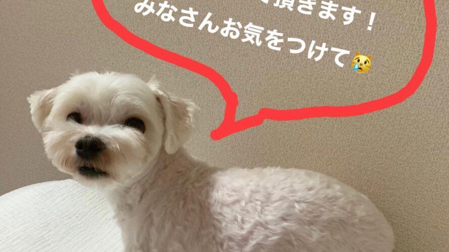 9/17(金)はお休みです!